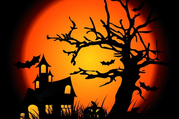 Frightening Flowerfield Halloween Fest 26 to 30th October