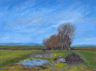 Landscapes on the way to Derry/Londonderry by Ayfer Mills (Oil on board, 10x8 inches)