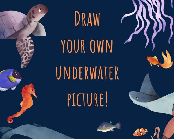 Day 3 - Draw your Own Underwater Picture